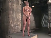 Hot tan busty Trina Michaels first time Hogtied appearance.You have to love California girls.