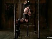 Mizz Amanda Marie - Rough Rider